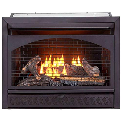 ProCom FBNSD28T Ventless Dual Fuel Firebox Insert, 29 in