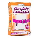 Garcinia Cambogia 60 cápsulas de Drasanvi