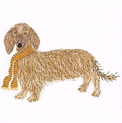 Glitter Hondenkaart - Dachshund met Glitter Stars Sjaal