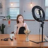 Selfie Ring Light per Telefono Video ripresa Trucco Youtube Vite Ritratto Fotografia con Stand Tavolo Specchio Top dimmerabile LED Foto da 12 Pollici luci Video lampade.