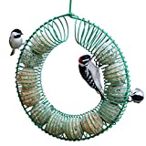 WWNLSO Ring Feeder Hanging Peanut Wreath Bird Feeder, Green Ring Suet Ball Feeder with Hook, Whole Peanuts, Wild Bird Feeder, Wild Bird Watching