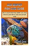 JACK DEMPSEY FISH CARE GUIDE: How to care for this feisty cichlid :...
