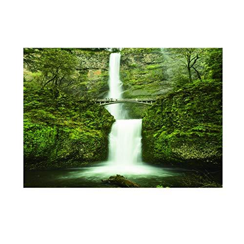 Homyl PVC Fond Autocollant Aquarium Paysage Affiche Fond Motif Océan Poisson Coraux Décoration Murale Peinture - M
