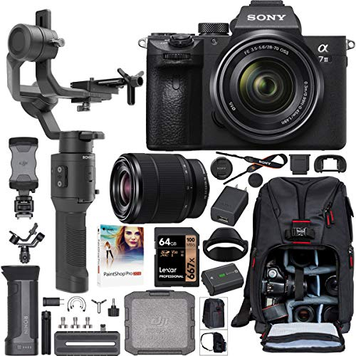 Sony a7III Full Frame Mirrorless Camera + FE 28-70mm F3.5-5.6 Lens ILCE-7M3K/B Filmmaker's Kit with DJI Ronin-SC 3-Axis Handheld Gimbal Stabilizer Bundle + Deco Photo Backpack + 64GB Card + Software