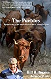 The Pueblos: My Quest to Run 101 Bull Runs in the Small Towns of Spain (English Edition)