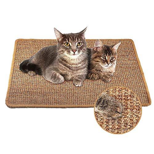 Xnuoyo Katzenkratzmatte, Sisal Kratzmatte, rutschfeste Cat Scratcher Mat, Katzen-Kratzmatte Katzenteppich, Krallenpflege Sisalteppich, Schützt Teppiche und Sofas (11,8 * 15,7 Zoll)