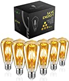 Edison Glühbirne E27,Woowtt Edison Vintage Glühbirne,6W LED Glühbirne,LED Filament Lampe Nostalgie,Antike Amber Warm Licht Retro Edison Birne,600 Lumen,ST64,220V,6W(60W Äquivalent)