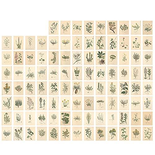 TOSSPER Pequeña Colección De Libros Retro Planta Mini Notas Pintura Famosa Materiales De Escritura Suplementos De Decoración