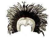 WIDMANN Tocado de plumas accesorios para disfraz de carnaval brasileño PS 19663 plateado Talla única