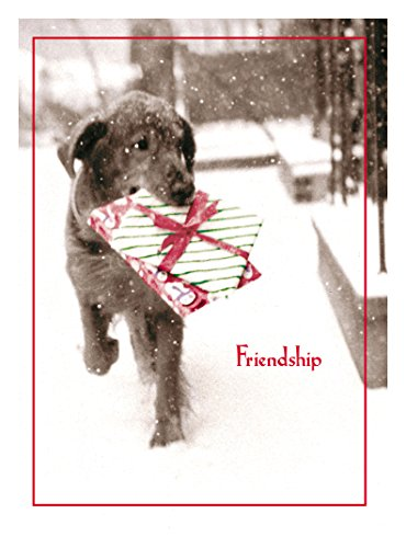 Avanti Press Christmas Cards, Friendship is The Best Gift of All, 20 Count (32558)