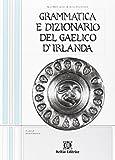 Grammatica e dizionario del gaelico d'Irlanda pronuncia. Con CD Audio