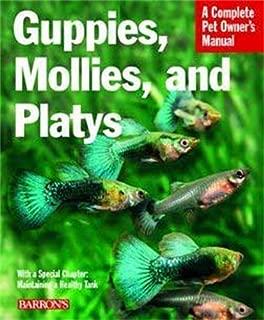 guppies mollies and platys