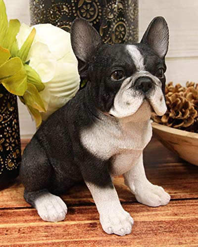Ebros Realistic Lifelike Black French Bulldog Puppy Dog with Glass Eyes Statue 7' Tall Hand Painted Frenchie Figurine Dogs Animal Collectible with Textured Body