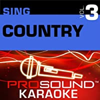 Sing Country Vol. 3 [KARAOKE]