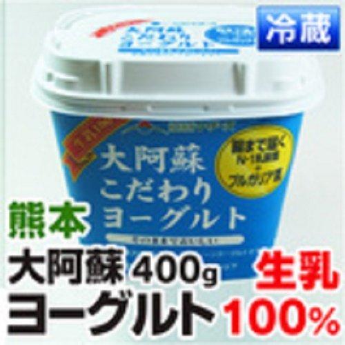 熊本産 ヨーグルト 阿蘇山麓の生乳100%使用(プレーン) 『大阿蘇こだわりヨーグルト』 1パック 【 野菜セット と同梱できます 九州 熊本 発酵 乳 乳製品 ダイエット 】