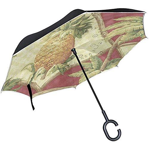 Inverted Umbrella Nord- und Südamerika Karte mit Flaggen Country Reverse Umbrella UV-Schutz Winddicht für Auto Regen Sonne im Freien