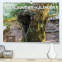 Schlaumeier-Kalender - Thema: Wald (Premium, hochwertiger DIN A2 Wandkalender 2022, Kunstdruck in Hochglanz): 12 tolle Motive aus dem Wald mit interessanten Fakten zum Thema Wald. (Monatskalender, 14 Seiten )