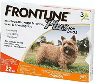 Best frontline flea protection for dogs Reviews