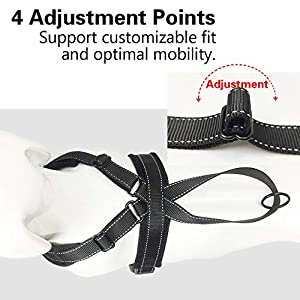 """DogFad Dog Harness No Pull Pet Adjustable Reflective Breathable Outdoor Vest Comfortable Nylon Material Front/Back Leash Clips Working Dog Vest with Handle (Black, S (Girth 15""""-20"""")."""