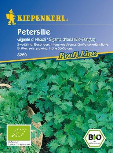 Saatgut Petersilie Gigante die Napoli / Gigante d'Italia (Bio-Saatgut)