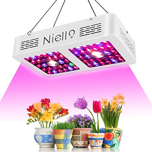 Niello 600W Cree COB Led Grow Light Reflector LED Pflanzenlampe Double Chips Pflanzenlicht Full Spectrum Growing with Daisy Chain for Veg and Flower