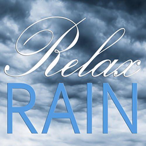 Rain Sounds, 自然音 & Nature Sound Collection