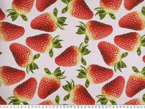 Zanderino a partire da 1 m, tessuto decorativo, stampa digitale, fragole rosse, bianco/rosso, larghezza 140 cm