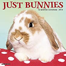 Just Bunnies 2019 Wall Calendar