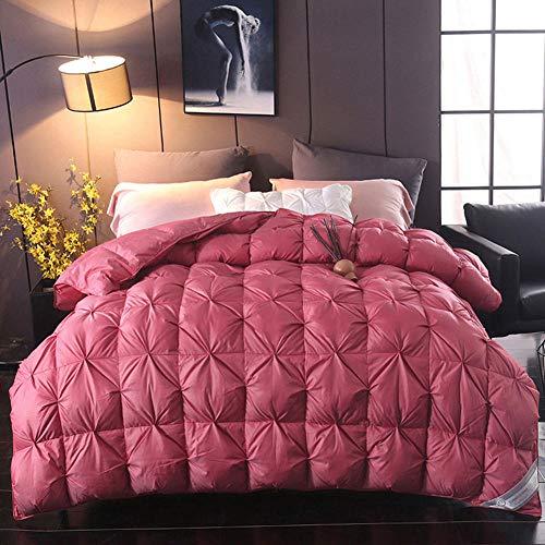 B/H Double Duvet,Warm Duvet Quilt ,Pure cotton twisted down duvet-A_220x240cm-5kg