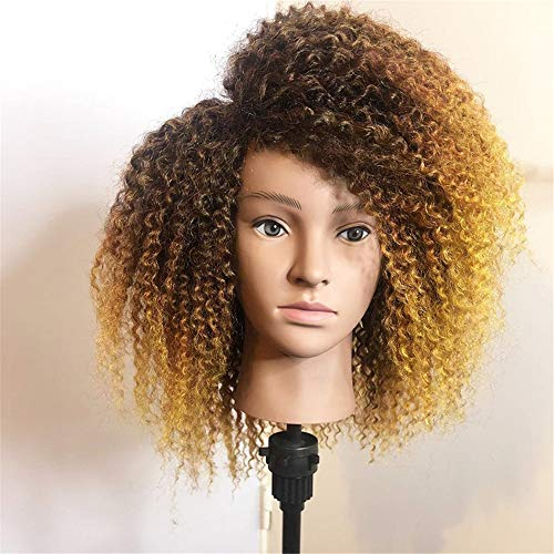 Densité Afro Kinky Curly Ombre 13X6 Lace Front Perruques de Cheveux Humains Avant plumé Dentelle Frontal Perruque pour Les Femmes Remy Noir Fin,18inches