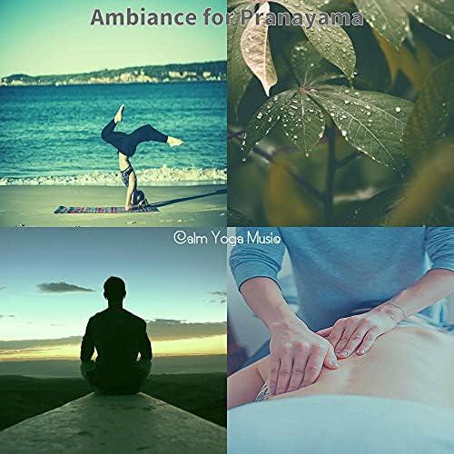 Calm Yoga Music