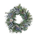 """Northlight Mixed, Berries and Snowy Pine Cones Artificial Christmas Wreath-Unlit, 24"""", Blue"""