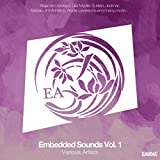 A Moment Of Tranquility (Emre Colak Remix)