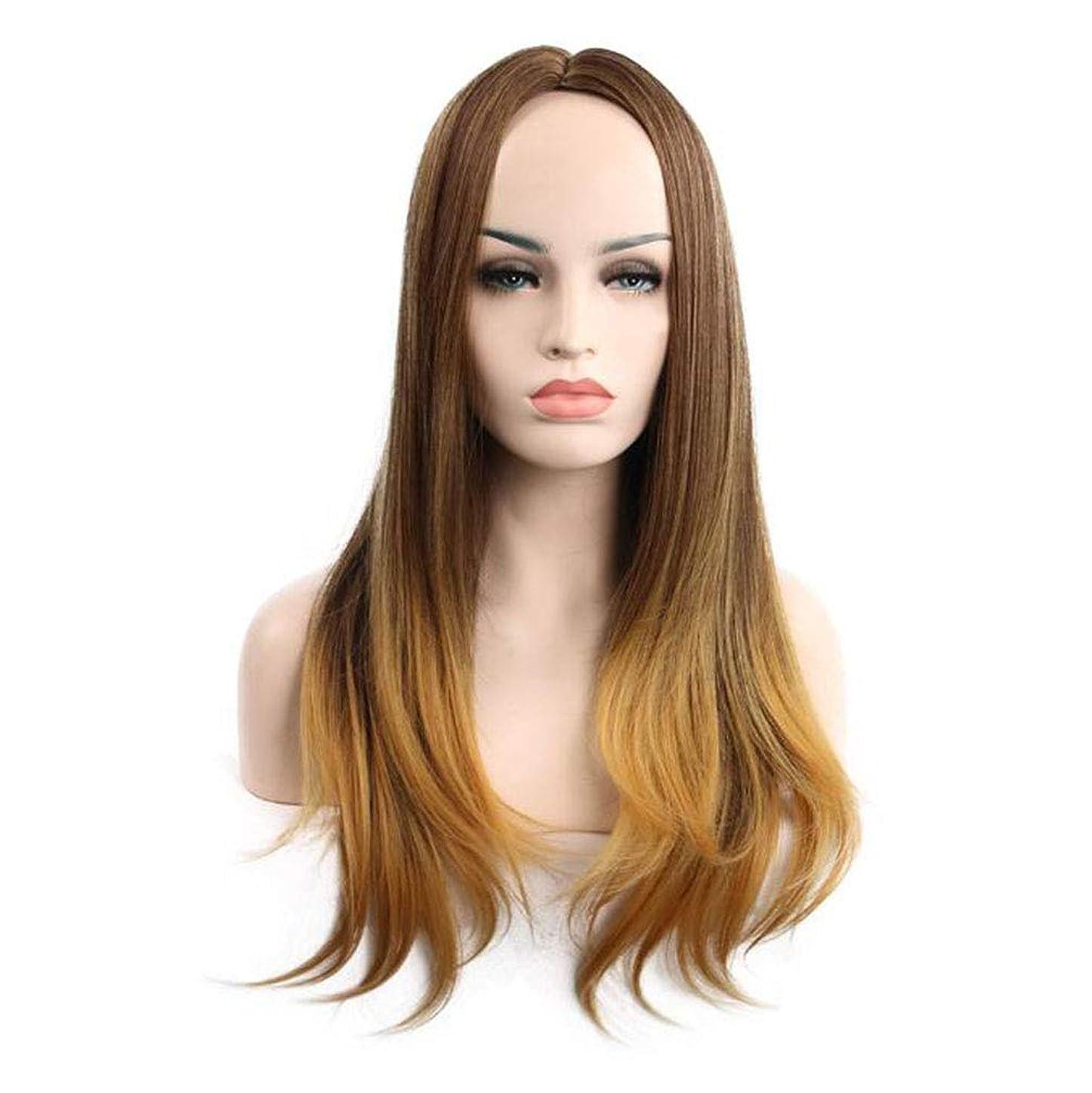 プロット熟練したスカート女性のためのグラデーションウィッグロングカーリーウェーブかつらヘアエクステンションのために女の子フレンドリー合成パーティー日常使用