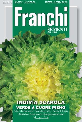 Seeds of Italy Franchi Scarole Verte