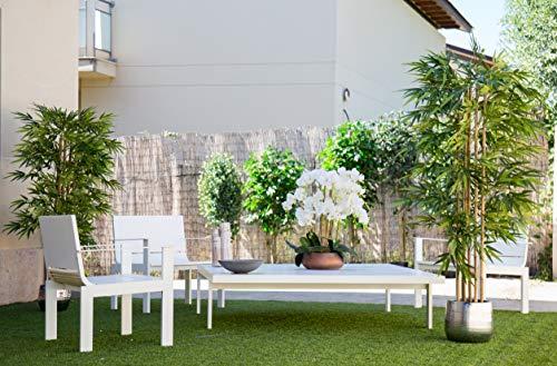 Maia Shop Bambusbaum mit Natürlichem Schilf, ideal für die Innendekoration, Baum, Künstliche Pflanze (180 cm), Bamboo - 3