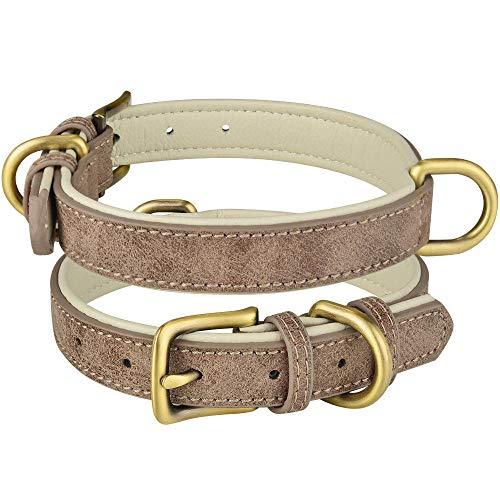 ZYYC Collar de Cuero para Perros, Ajustable, Doble Anillo en D, Control de Perros, Perros pequeños, medianos, Grandes-Gris_M 29-38CM