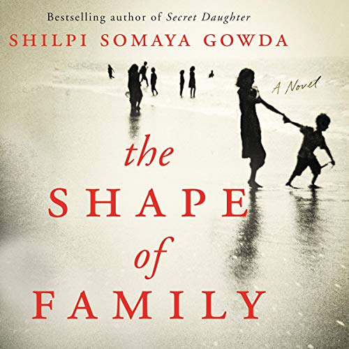 The Shape of Family audiobook cover art