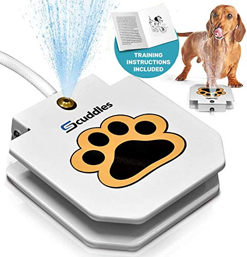 Scuddles Dog Water Fountain Step On Toy – Paw Petal Activated Dog Water Sprinkler Essential for Your Pets Happiness and Fun- Outdoor Automatic Water Dog Fountain for Big and Small Dogs Drinking and Pl