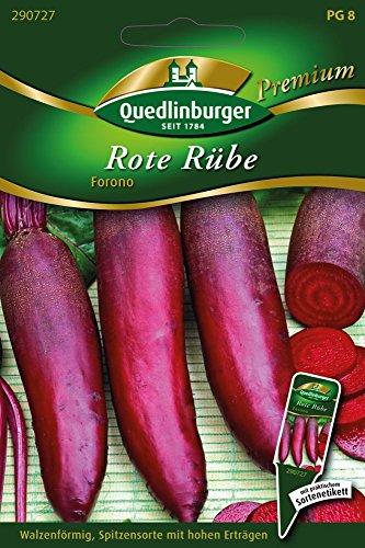 Rote Rüben Forono von Quedlinburger Saatgut
