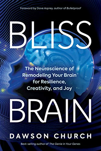 Bliss Brain: The Neuroscience of Remodeling Your Brain for Resilience,