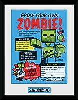 GB eye LTD, Minecraft, Grow Your Own Zombie, フレーム入りプリント 30x40cm, 木製, 多種, 52 x 44 x 3 cm