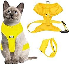 Arnés de lujo para gato acolchado y resistente al agua Dexil.