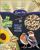 Lyra Pet® 25 kg Erdnusskerne ganz halb Splits gemischt teilweise mit Haut HK Südamerika Erdnüsse Vogelfutter Wildvogelfutter
