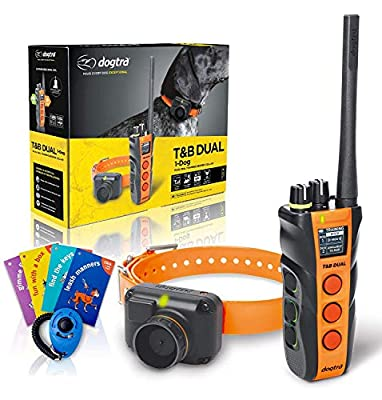 Jestik Dogtra T&B Dual Dial 1-Dog Training & Beeper Remote Training E-Collar for Upland Hunters - 1.5-Mile Range, Rechargeable, Waterproof - Plus 1 iClick Training Card, Click Trainer - Value Bundle