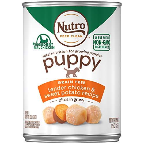 Nutro Large Breed Puppy Wet Dog Food