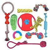 Ensemble Lot de 10 de jouets pour chien, durables mâcher corde jouet solitude petits...