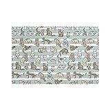Tcerlcir Set di 6 Tovagliette Gatti Pattern Stripess Lavabile Antiscivolo Resistente al Calore per la Cucina e la tavola 45x30cm