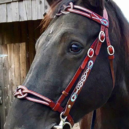 Kit Equestrian Staccabile equitazione cavezza testa collare di cuoio durevole del metallo Briglia Redini cinghia regolabile Pratico attrezzature equestri Formazione Redini per Cavalli ( Color : Red )