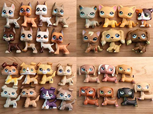 YWH lps Rare Figures Surprise Grab Pack(5pcs Random), lps Cats and Dogs lps Collie lps Short Hair lps Dachshund lps Cocker Spaniel with 7pcs Random Accessories Kids Gift